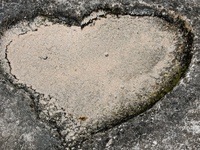 Hearts in nature ......