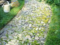 homestead - outdoor ideas.
