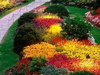 Garden & exteriors