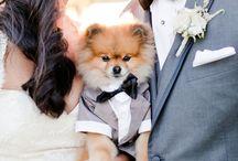 muffin@wedding