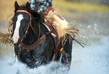Cowgirls Have Fun! / Cute Cowgirls / by Alexis Pappas-Rushing