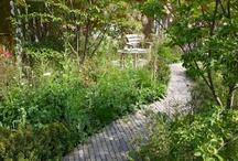 garden TVB