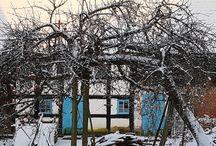 Polish cottages