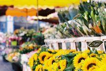 Sunflowers :) / by Daejanna Preston