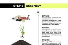 Plant plans