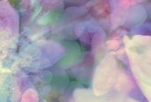 Colors ~ Pastels / by Alexandra
