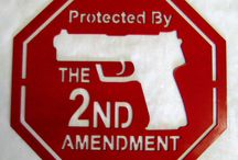 2nd Amendment / by Poor But Posh