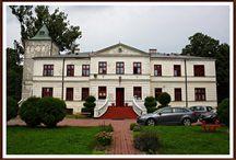 Giżyce - Pałac / Pałac w Giżycach  wybudowany w roku 1875 na miejscu wcześniejszego dworu obronnego z XV wieku. Dwór obronny został ufundowany przez biskupa płockiego Pawła Giżyckiego w 1439 roku. Pałac został wzniesiony dla rodziny Suskich. Po wojnie w budynku mieścił się Uniwersytet Ludowy. Obecnie w pałacu mieści się państwowy dom dziecka.