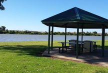 Why we love Murray Bridge.. / Located on the banks of the beautiful Murray River, our town has so much to offer. These are a few of the things we love about Murray Bridge. www.murraybridgeprofesssionals.com.au Phone: 08 8532 6666