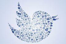 Twitter Marketing / Utilizing Twitter to market your business or service