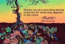 Rumi!!