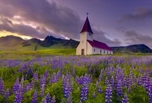 Old Churches / by Sheri Bryant