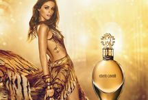 Roberto Cavalli Perfume / Roberto Cavalli perfumes, fragrances and colognes