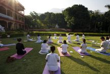 Yoga Camps in India
