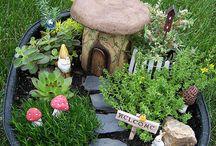 Garden terarium/plants