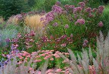 Blomsterbed og kreative beplantinger.