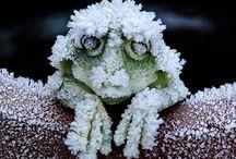 寒い〜❗️