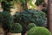 Utomhus ideer / Idéer att ha i sin egen trädgård