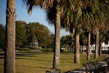 Charleston Community Board