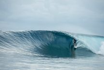 Surfing World  / Some images from the surfing World
