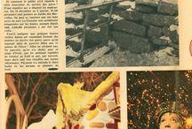 Jardin des Merveilles (6) / Document parlant du jardin des Merveilles en hiver