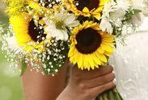 Beautiful Wedding Bouquets / Bouquets of beauty!