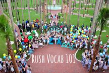 Sorority Recruitment/Rush / Rush! Sorority recruitment ins and outs.