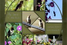 Country Patches  / This Board shows different Photo Collage layouts all using the Country Patches Stencil as the design template.  / by Lea France Scrapbooking (Photo Collage)