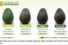 """How do you...Avocado?"" / by Hass Avocados"