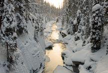 Snowy Places / by Paula Tennyson