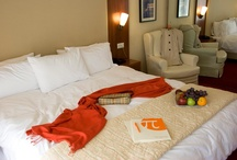 Accommodation / Hotel Polis Grand Hotel offers 95 rooms, well appointed with simple elegant lines, warm colours and contemporary design surrounding the guest with a feeling of intimacy and genuine warm hospitality.