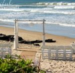 Some wedding options for you to consider