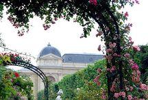 Landscape and Gardens 10 / Landscape and Gardens 10