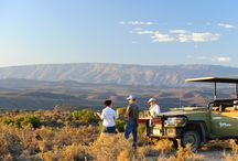 """Sundowner drinks / A """"sundowner"""" drink is one enjoyed during an afternoon game drive on safari. Just before sunset, your game ranger stops in a suitable area and unpacks a cooler box filed with wine, beer, G&T, soft drinks etc, a well as some snacks. It's a hard life!"""