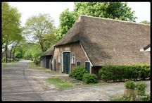 Dutch farmhouses, buildings, etc. ...... old and new.