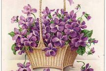 Beautifull Baskets