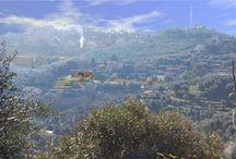Immo Italien / Immobilien zu verkaufen in Italien | Immobilien Blog