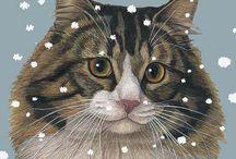 Un gatto per tutte le stagioni! / Nato un po' per gioco, ma soprattutto per amore, per questo felino che... ci prende il cuore! Gionata (Alfieri & Paola (Brugiamolini)