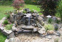 mała woda w ogrodzie