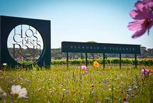 Venez découvrir Le Clos des Roses ... / Un havre de verdure, une décoration provençale chic, une restauration moderne et raffinée, pour un moment d'exception . Crédit Photo : Marlène Kuhn Photography