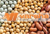 Exporters of Food grains / Varsha Industries are the Exporters of Food grains   world wide. Foodgrains they provides are Sorgham, Green Millet, Barley, Rice, Wheat,  Corn... and many more.. visit our website for further detais... http://varshaindustries.co.in/grain.php.