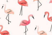 i love flamingo