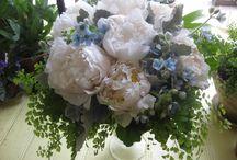 Wedding Greenery - Maidenhair Fern