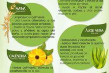 Cosmética eco-natural / Eco-natural cosmetics