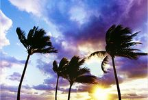 Hawaii Island / Take the trip of a life time. Visit the enchanting Hawaii Island with Makana Charters and Tours.