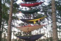 Summer Camp / Everything summer camp!