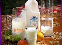 Kefir and fermentation