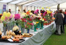 Flower Show 2014