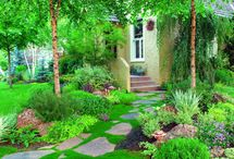 landscaping / by Regina Moore Thomas