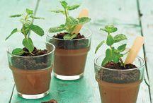 Better Home and Garden Ideas